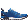 adidas TERREX Agravic Shoes Men Collegiate Navy/Blue Beauty/Grey Two